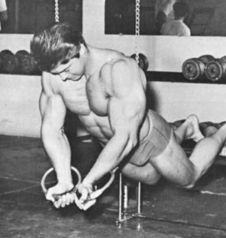 Larry Scott Suspension Ring Flyes Chest Vince Gironda
